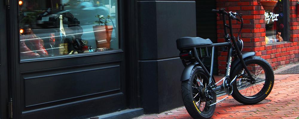 ロッカフレーム eバイク